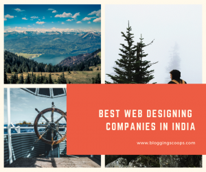 best web designing companies in india